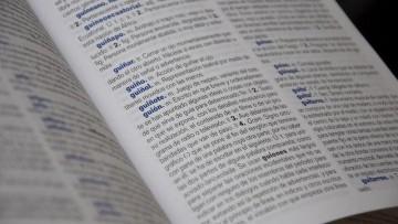 """Curso teórico-práctico """"Del léxico al diccionario: temas de teoría léxica y aplicación lexicográfica"""""""