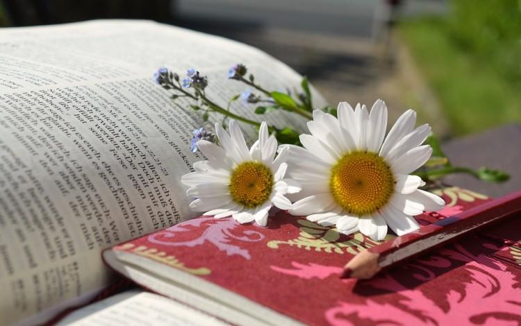 Certamen Literario para Egresados/as