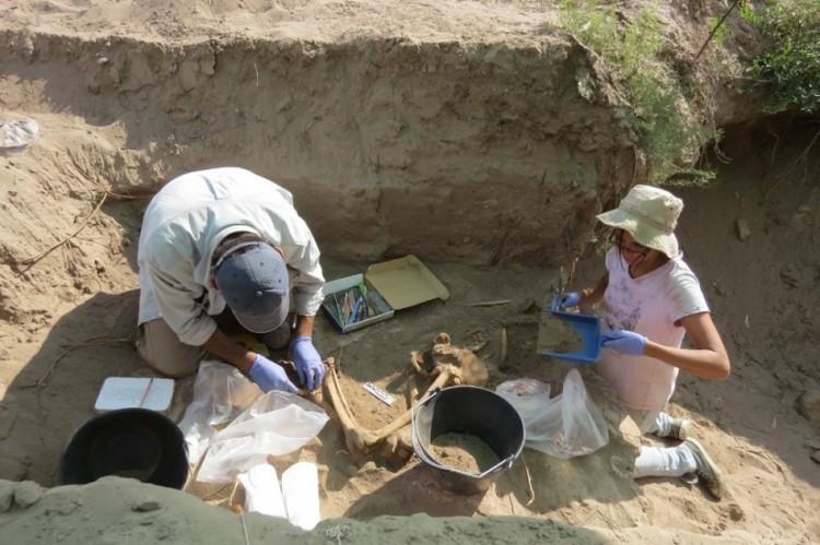 Nueva Carrera en Posgrado: Doctorado en Arqueología