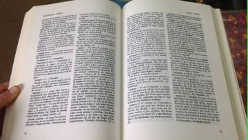 """Conferencia """"La estadística: una herramienta imprescindible de la lexicografía"""""""