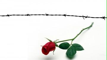 Inscripciones abiertas para la Diplomatura en Derechos Humanos
