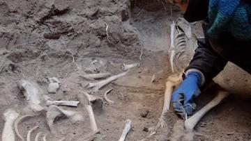 Importante hallazgo arqueológico en el Departamento de Rivadavia
