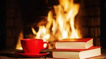 La Ronda Lectora Literatura en Voz Alta se despide de sus seguidores/as hasta después del receso invernal